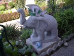 Elefantentaufe